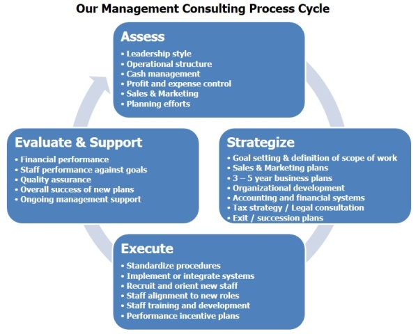 Management Consulting Process Cycle